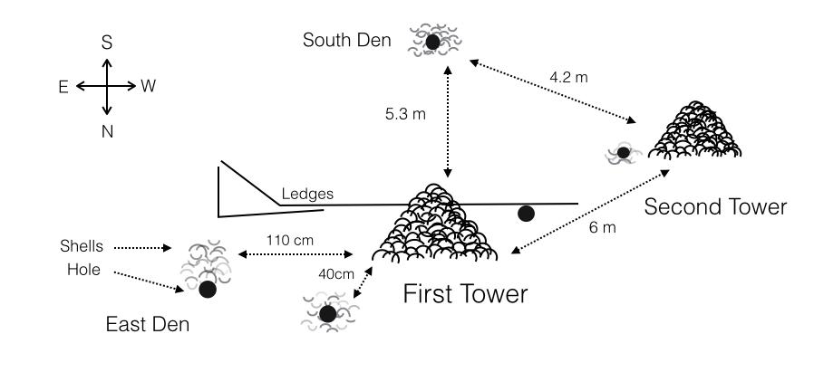 Engineer fish chart Dec 2013